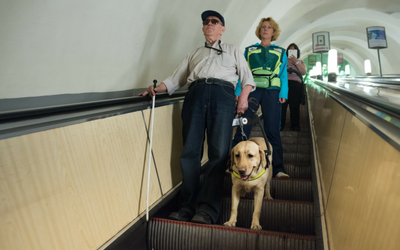 image for International Guide Dog Day- April 25th